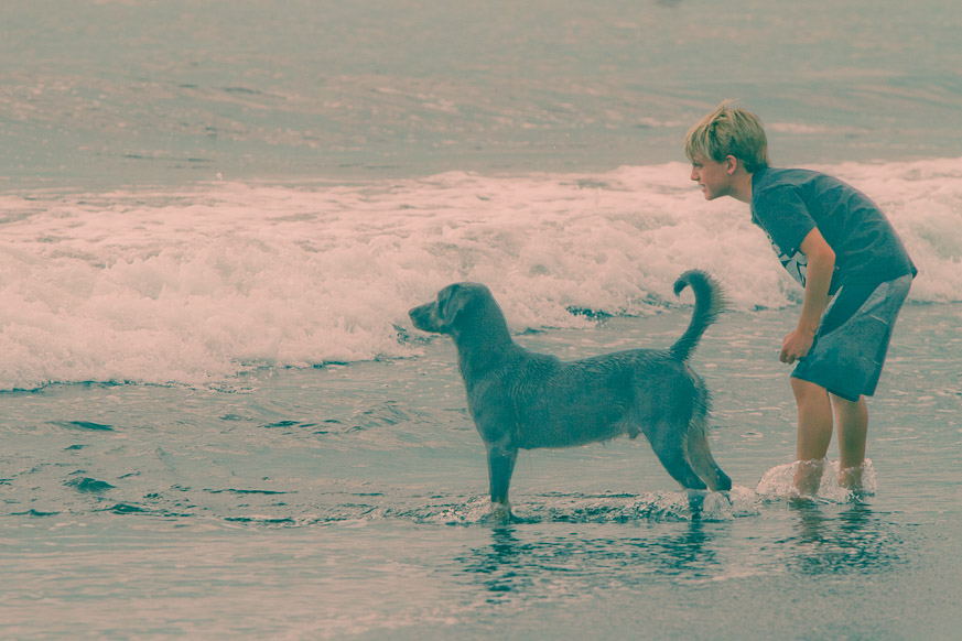 Boy and Dog Chasing Coconut