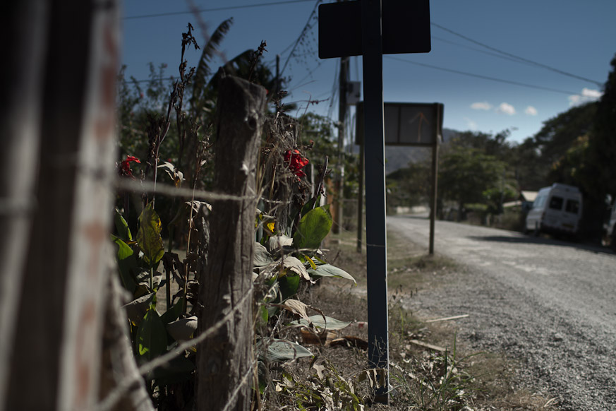 Dying Flowers, A Road in Portrero
