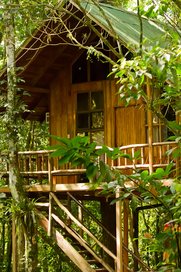 Costa Rican Treehouse Hotel